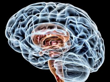 Distúrbios de micção podem estar relacionados a doenças neurológicas